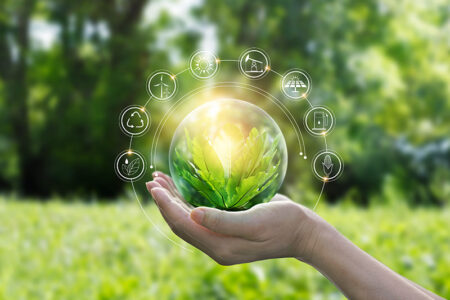 Building sustainability in a food chain